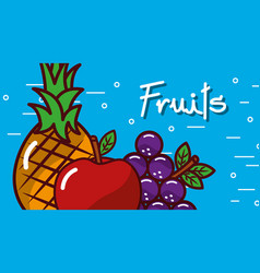 apple grape pineapple fruits blue background vector image