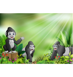 Cartoon of the nature scene with gorilla group vector