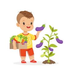 Cute little boy picking eggplants in the garden vector