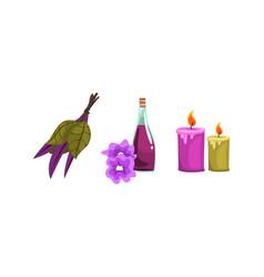 spa symbols set aroma candles bottle oil vector image