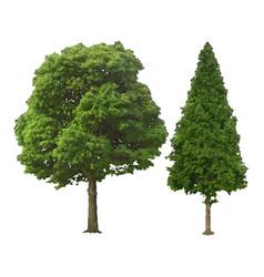 tree natural vector image