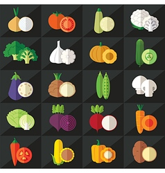 Vegetables flat icons vector image vector image