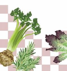 veggie square vector image