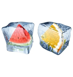 Ice cubes with watermelon and orange vector