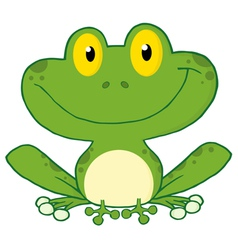 Smiling Green Frog vector image vector image