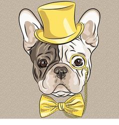hipster dog French Bulldog breed vector image