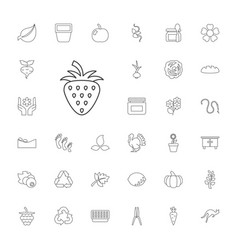 33 natural icons vector
