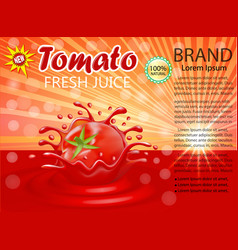 a splash juice a tomato vegetable vector image