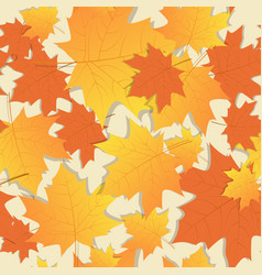 autumn seamless pattern background yellow maple vector image