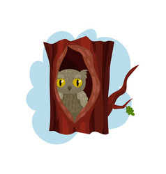 Cute owlet sitting in hollow of tree hollowed out vector
