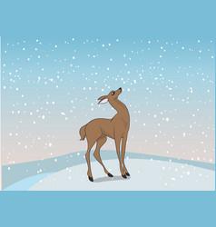 Deer female color vector