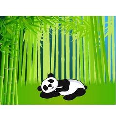 sleeping panda vector image