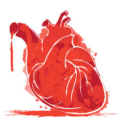 Watercolor human heart with splashes of blood vector
