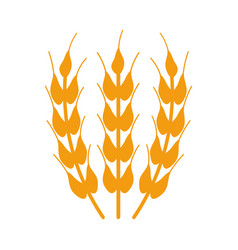 Wheat icon on white background vector