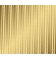 abstract metal gold hexagon with cells vector image vector image