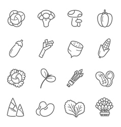 Lines icon set - vegetable vector image vector image