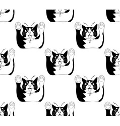 cute black and white cat attack on white vector image vector image