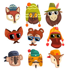 animals wearing hipster hats and sunglasses vector image