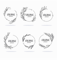 nature organic bio nature doodle floral leave vector image