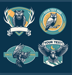 Owl badge design set vector