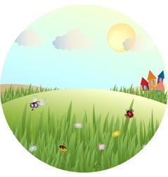 picture of a fabulous summer meadows vector image