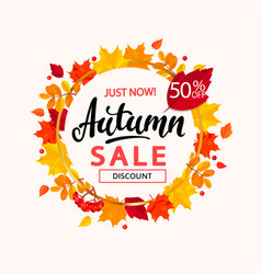 Autumn sale banner in frame from autumn leaves vector
