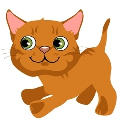 Cartoon playful ginger kitten with green eyes vector
