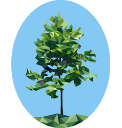 Polygonal tree young oak oval low poly vector