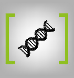 the dna sign black scribble icon in vector image