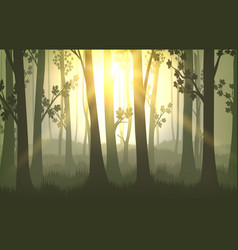 tree trunks sunset background vector image