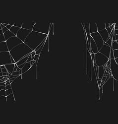 White spiderweb on black background vector