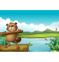 A beaver above a floating trunk holding a piece of vector image