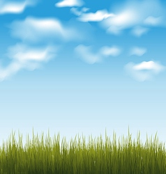 Spring background with green grass and sky vector image