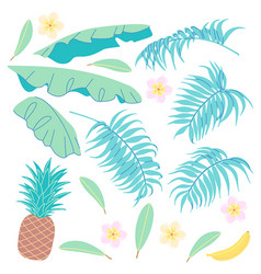 banana leaves palm fronds pineapple and plumeria vector image