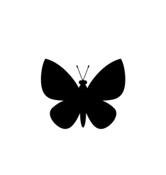 black silhouette of butterfly isolated on white vector image