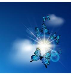 Blue butterflies vector image