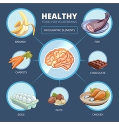 Brain food infographics vector