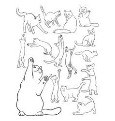 Cat line art vector