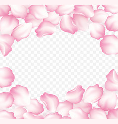 falling red rose petals isolated on white vector image