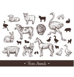 Farm animals handdrawn vintage set with cow sheep vector