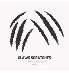 Isolated claws scratches vector