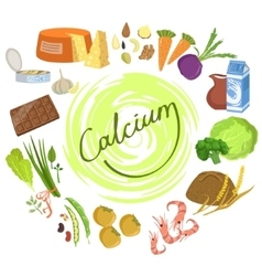 Products Rich In Calcium Infographic vector image