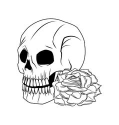 Skull and rose tattoo art design vector