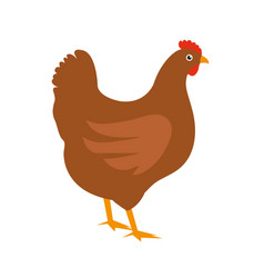 chicken icon flat style isolated on white vector image