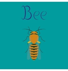 Flat on background insect bee vector