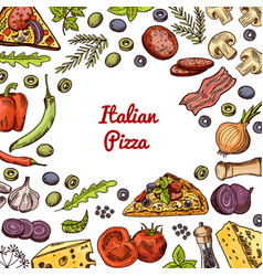 hand drawn pizza ingridients and spices vector image