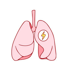human healthy respiratory system lungs icon with vector image