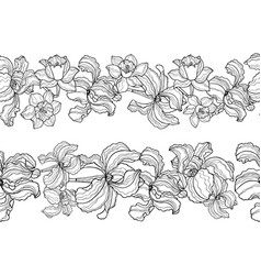 iris and narcissus seamless borders set vector image