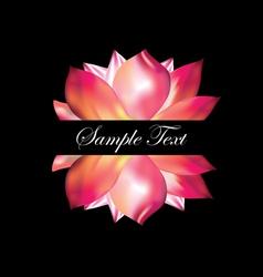Pink lotus on black background vector image