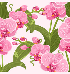 Pink purple tender orchid floral seamless pattern vector